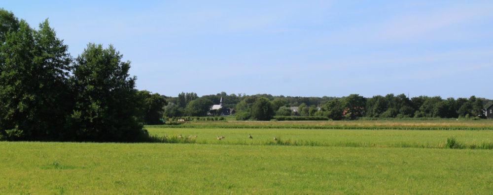 Stichting Westelijk Tuinbouwgebied Haarlem
